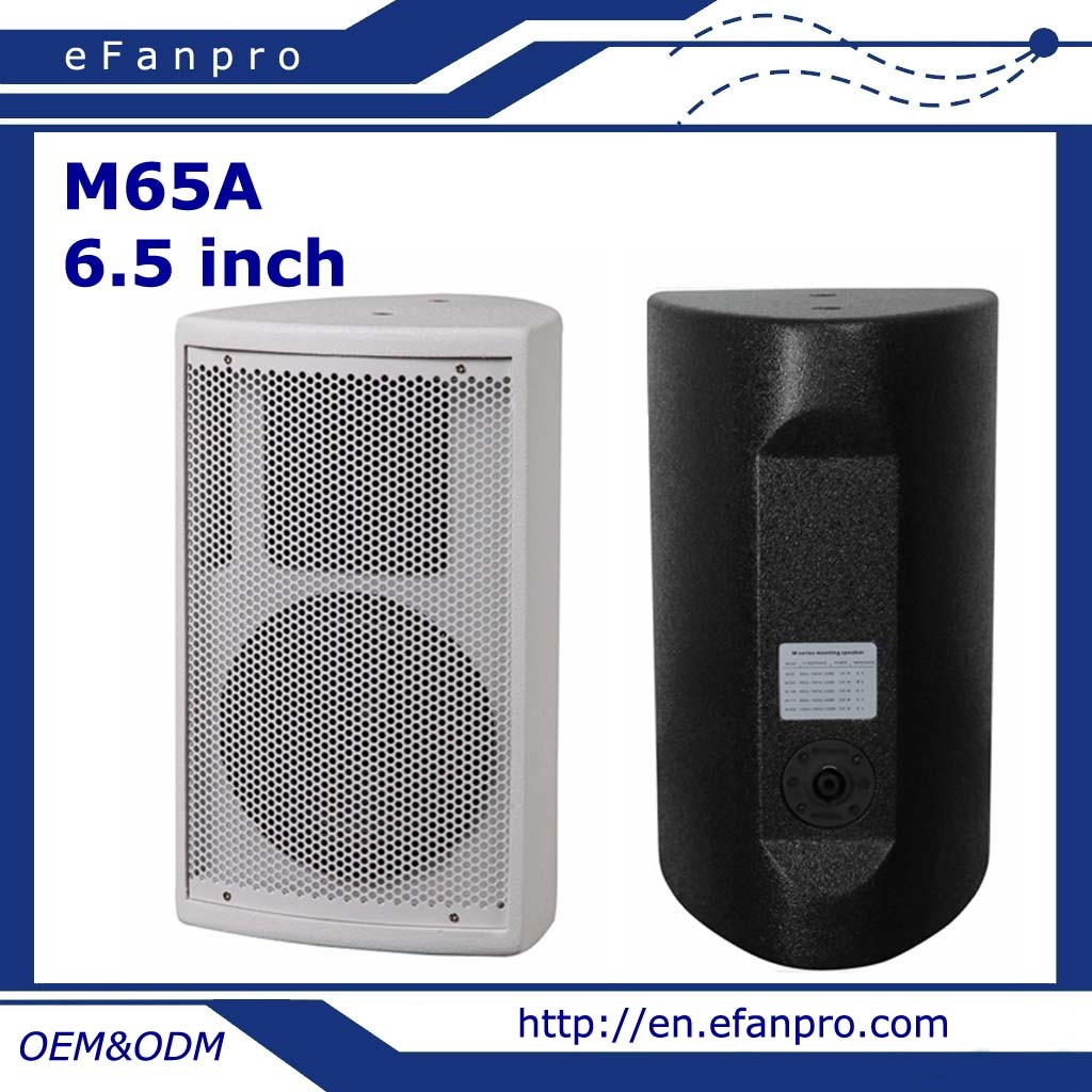 Single 6.5 Inch Professional Meeting Room Conference Speaker