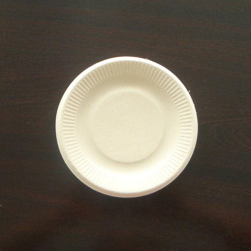 Biodegradable Sugarcane Bagasse Paper Plate