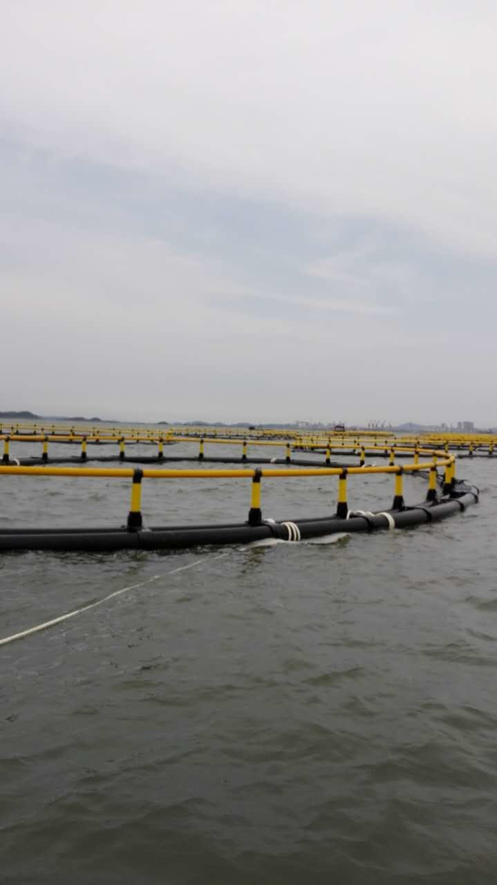 Round Floating Aquaculture Equipment System Fish Farming Cages for Raibow Trout