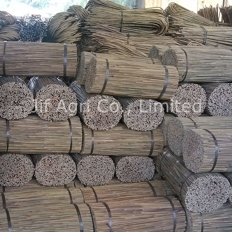 Nature Dry Straight Tonkin Bamboo Fence