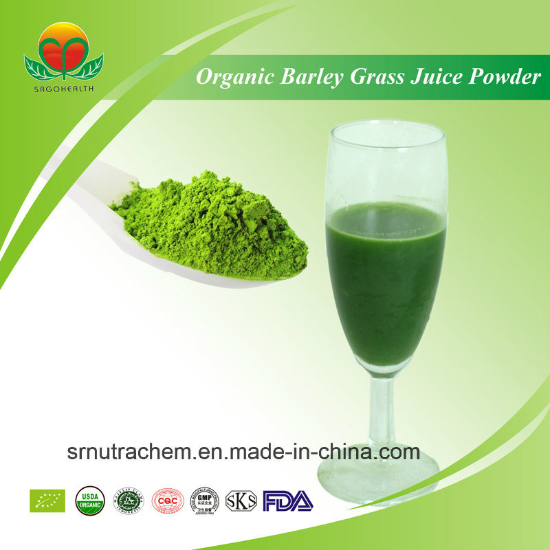 Manufacture Supply Organic Barley Grass Juice Powder