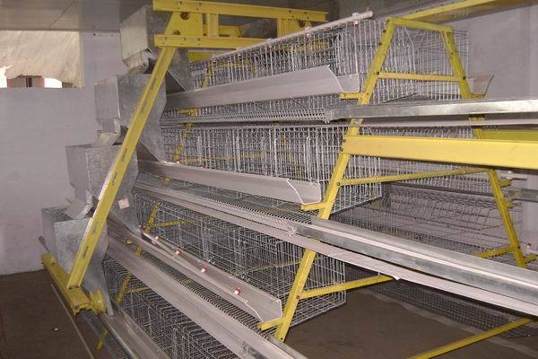 Poultry Farming in Kenya-layers Kenya Layers Farm Chicken Cage