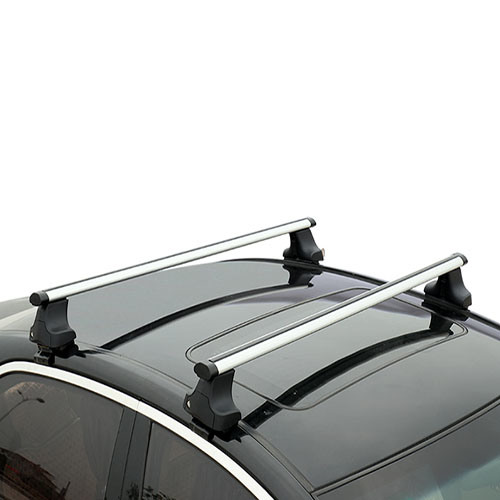 Universal Type Car Roof Rack with High Quality (Bt RF310)