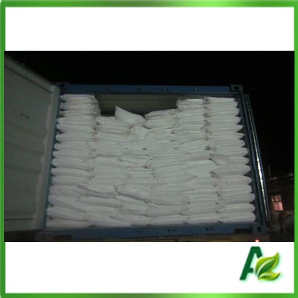 Food Grade Preservative Sodium Benzoate Powder Made in China