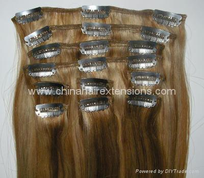 Hair Extensions, Long Hairstyle 2011, Hairstyle 2011, New Long Hairstyle 2011, Celebrity Long Hairstyles 2031