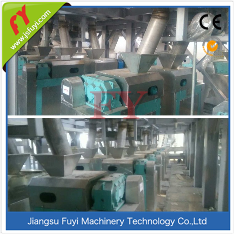 2017 Hot Double Roller Press granules making machine for potassium sulfate