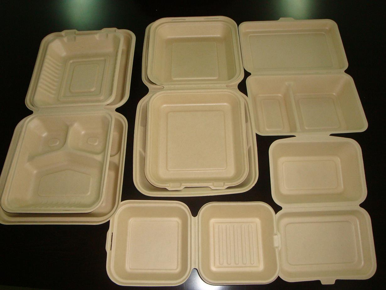 Biodegradable Sugarcane Clamshell for Hamburger