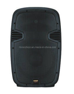 Professional Full Range Speaker Box with MP3 (PX-Series)