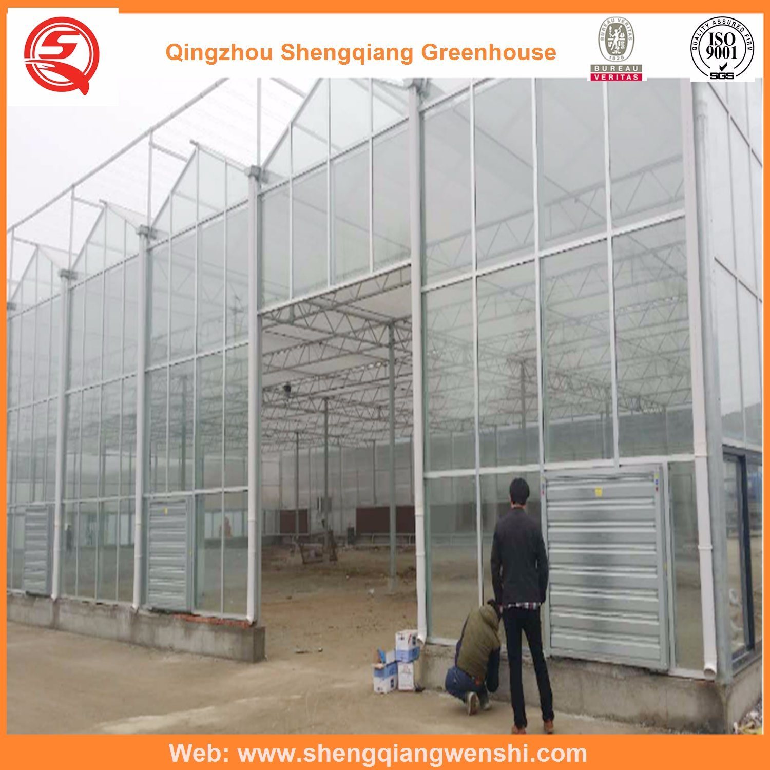 Agriculture Multi Span Polycarbonate Sheet Greenhouse for Vegetables