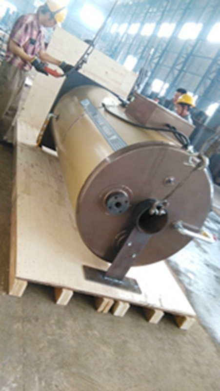 Oil or Gas Fired Steam Boiler for Industry