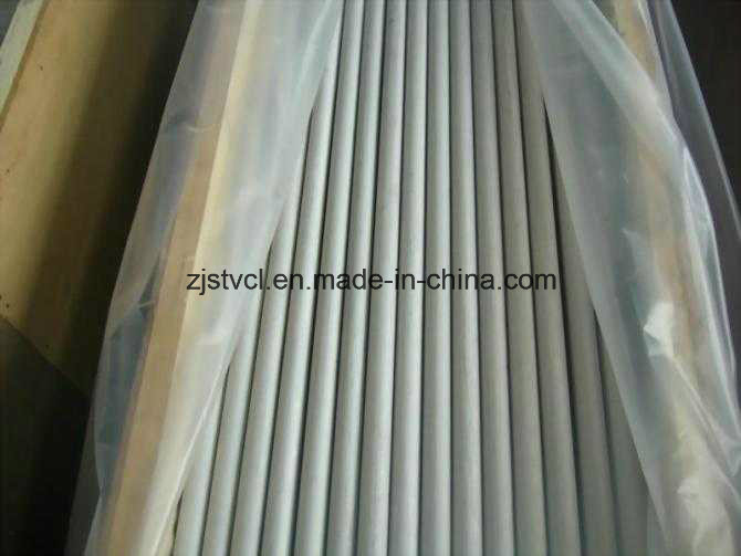 Stainless Steel Seamless Pipe Tubing of ASTM A312 TP304