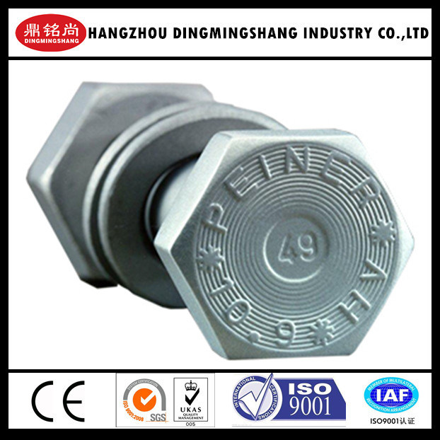 En14399-4 High Tensile Bolt for Steel Structure