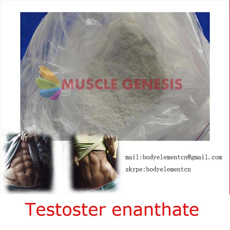 Legal Pharmaceutical Bodybuilding Supplement Powder Test Enanthate Testosterone Enanthate