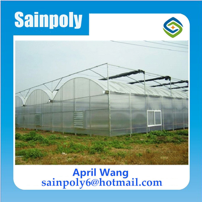 Wholesale PC Sheet Multi-Span Venlo Greenhouse for Hydroponic