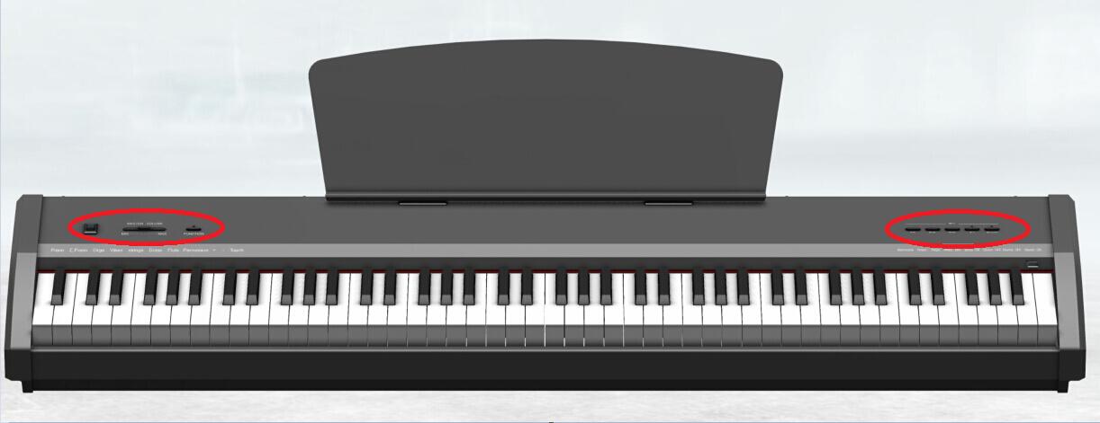 Chloris 88 Keys Electric Piano Keyboard