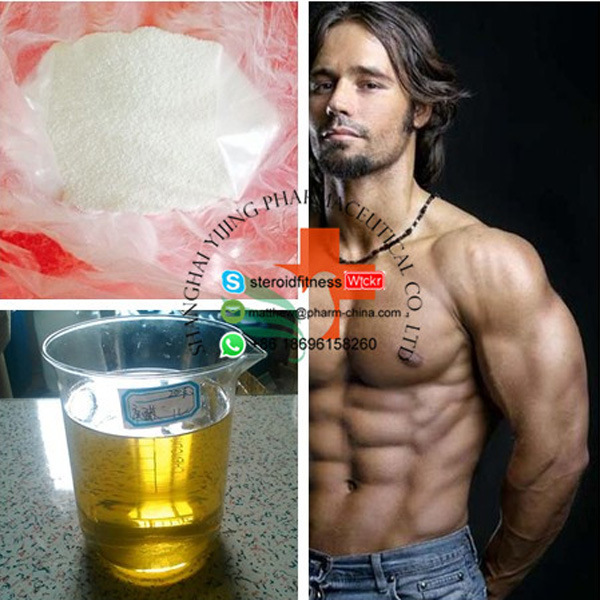 100% Safe Delivery Mixed Steroid Conversion Anomass 400mg/Ml