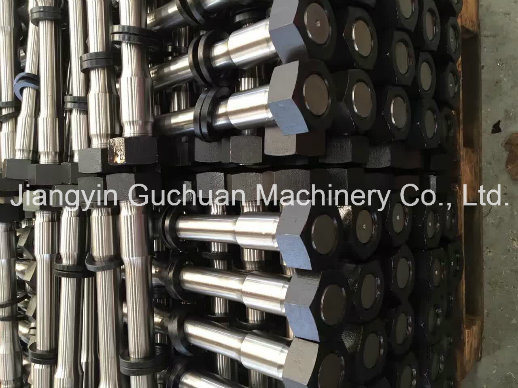 High Yield Strength Special Fastener Anchor Bolt with Black Surface