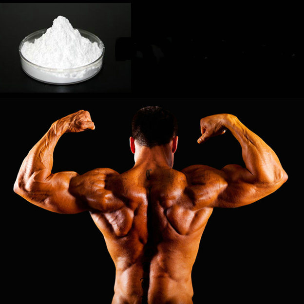 Steroid Testosterone Decanoate CAS No.: 5721-91-5