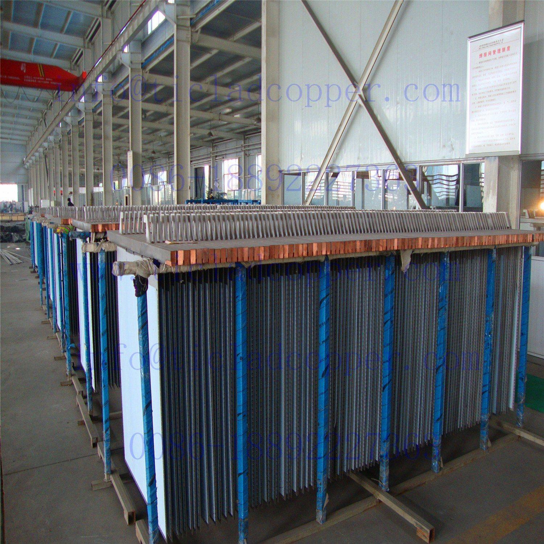Titanium Clad Copper Mother Sheet/ Ti Clad Copper Cathode Plate
