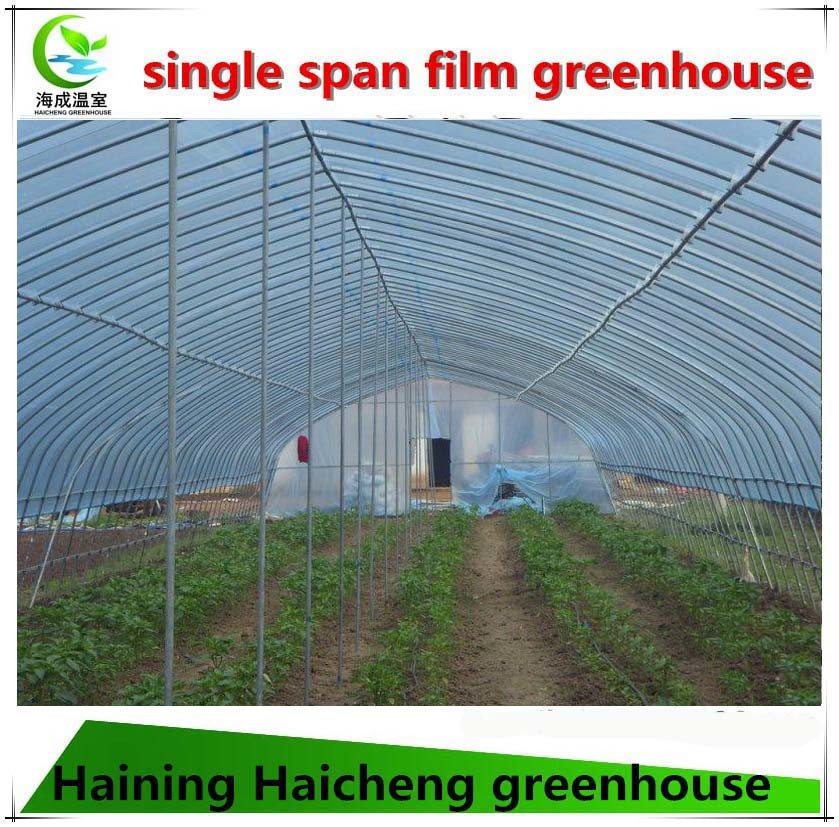 Cheap Tunnel Greenhouse for Agriculture