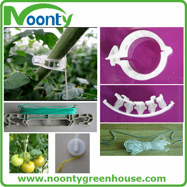 Tomato Plastic Clip for Vegetable & Fruit Growing