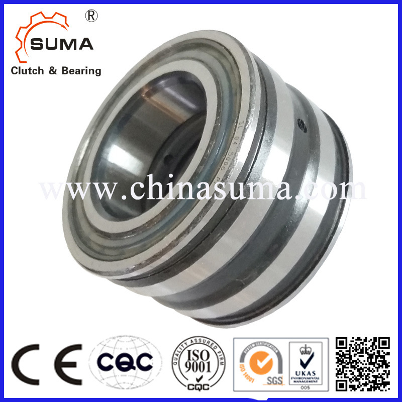 Double Row Cylindrical Roller Bearing SL04 SL05 Bearing