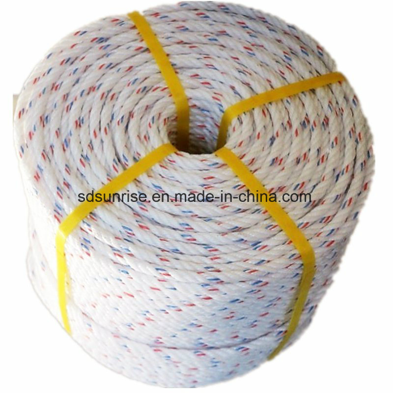PP Danline Rope White with Red