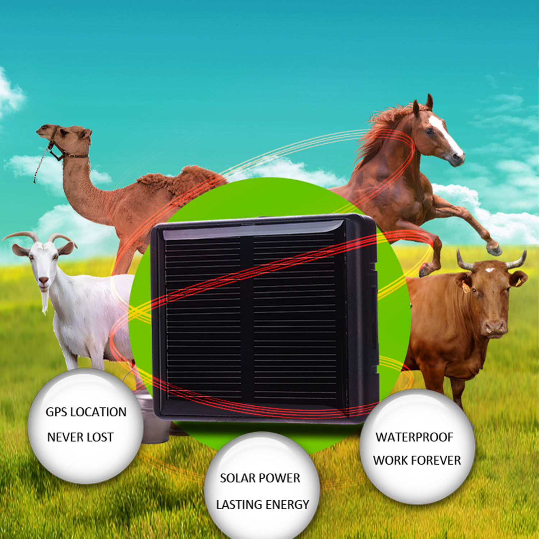 Solar Power Charging GPS Tracker for Livestock (V26)