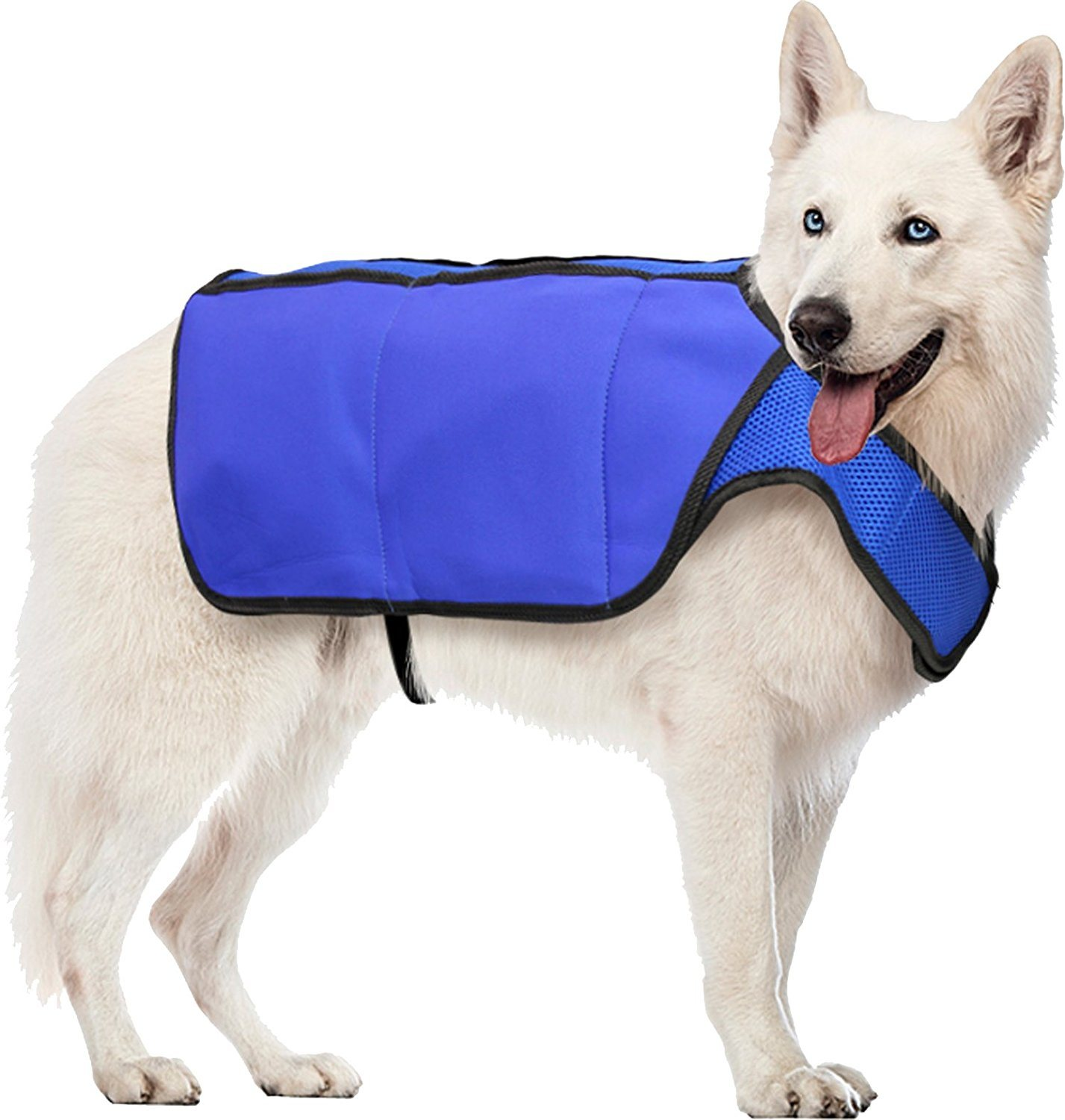 Pet Products Cool Cooling Summer Vest for Dogs, Large, Blue