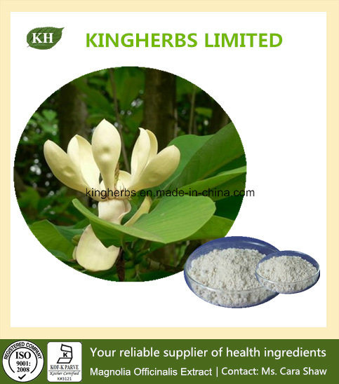 Magnolia Bark Extract Honokiol 95% / Cortex Magnoliae Officinalis Extract