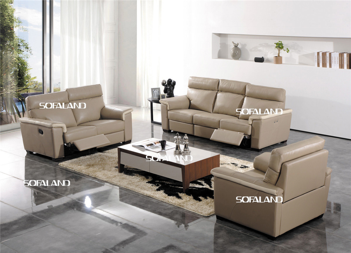 China Leisure Leather Sofa Living Room Home Leather ...