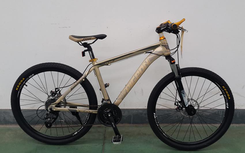 Tx8.0 Fashion 24 Speed Alloy MTB Bicycle (FP-MTB-A071)