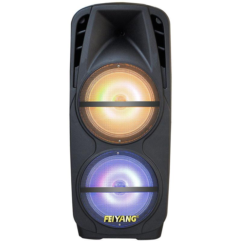 "2*12"" Powerful Bluetooth Active Speaker F106D"
