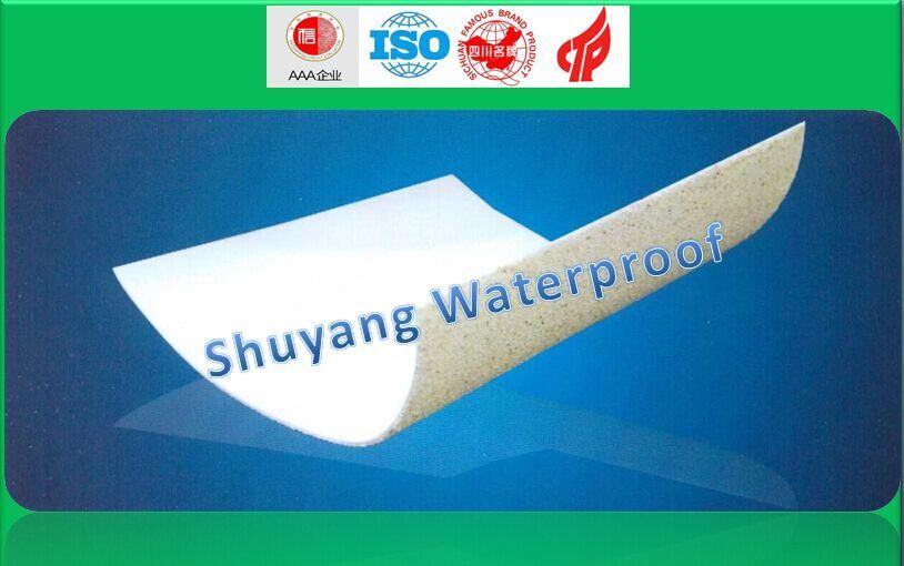 HDPE Waterproof Membrane