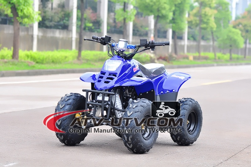 China Supplier Manufacturing 50cc Quad Bike