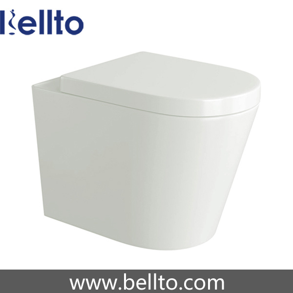 Ceramic Back to Wall Toilet with Concealed Cistern (315B)