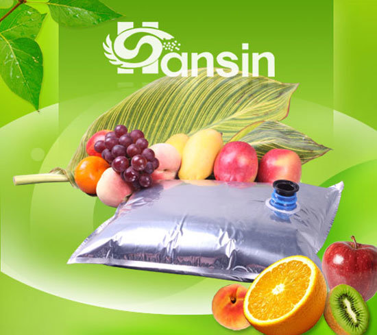 Aseptic Bag for Tomato Paste and Fruit Concentrates