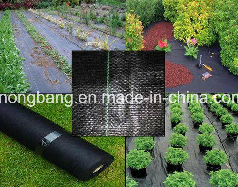 Heavy Duty Black Ground Cover