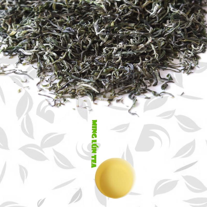 Russia Hot Sale Maojian Green Tea