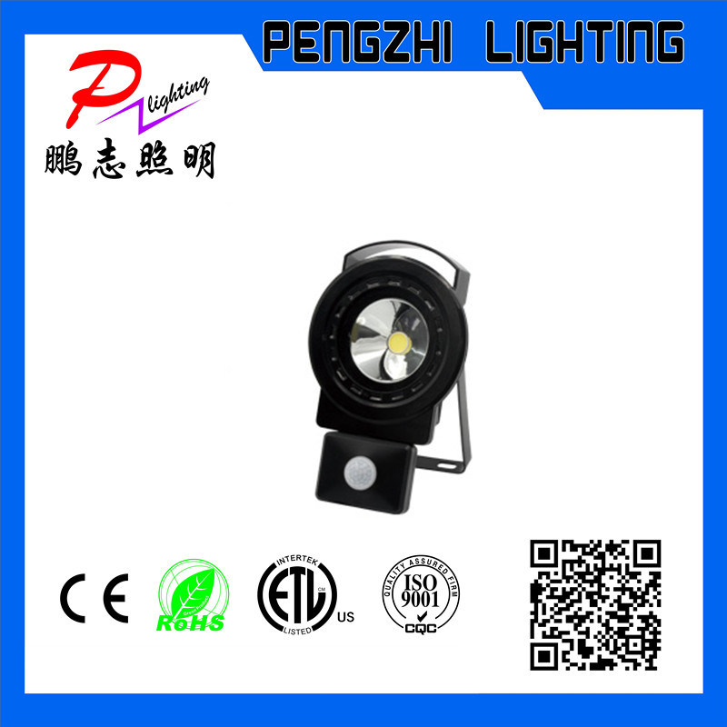 LED Flood Light (PIR)