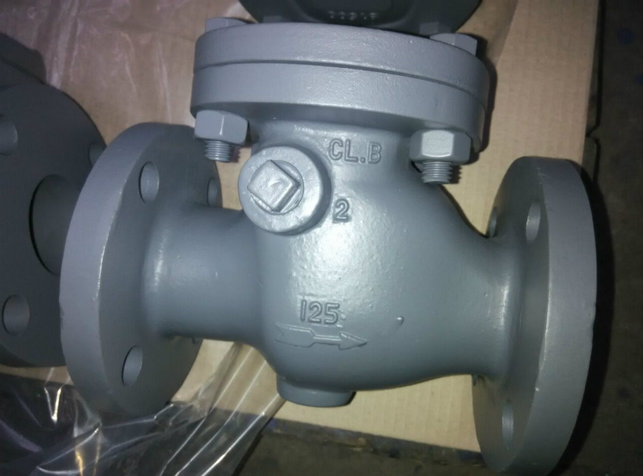 ANSI Cast Iron Swing Check Valve