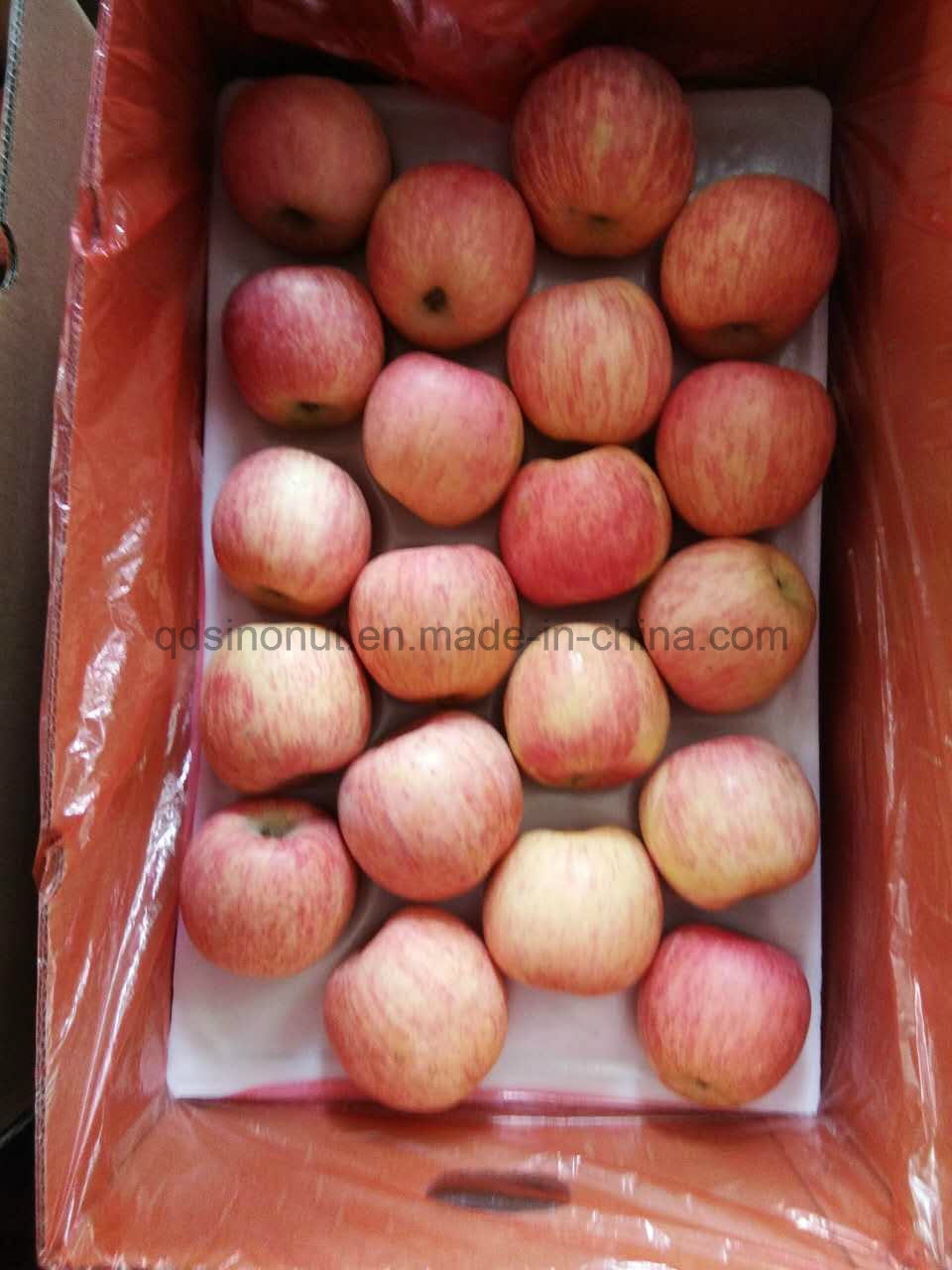 Red FUJI Apple From China