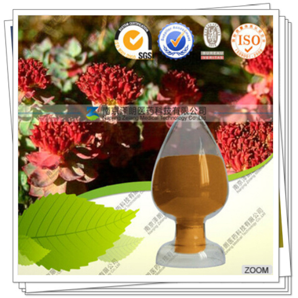Manufacturer 3% Salidrosides Rhodiola Rosea Extract with Rosavin