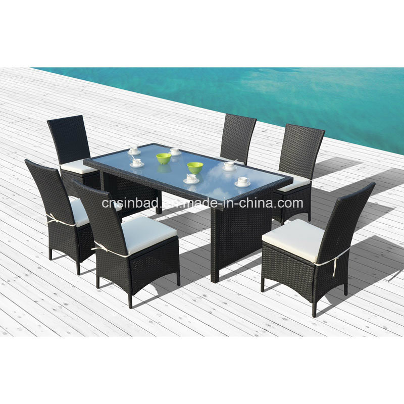 Rattan Furniture for Outdoor / Dining Set with SGS Cetificated (1024)
