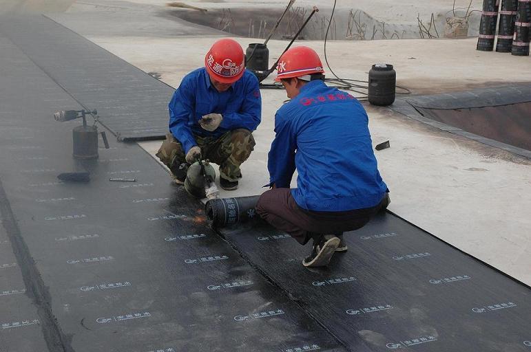 Bitumen Waterproof Membrane for Roofs, Basement, Roads, Bridges etc by Torch