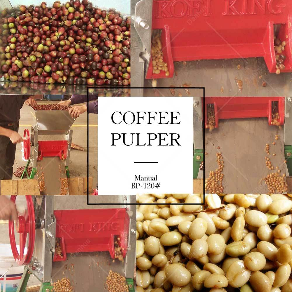 Manual Coffee Bean Pulper / Fresh Cherry Coffee Pulping Machine (BP-120#)