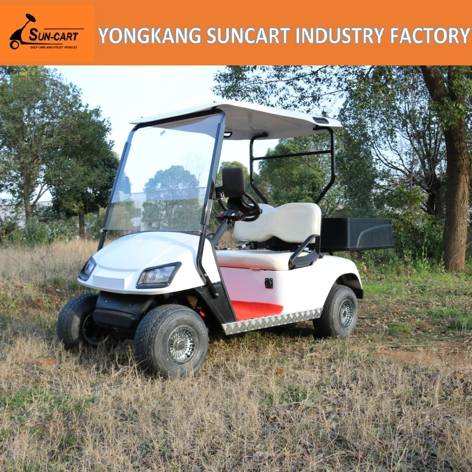 Electric Utility Golf Cart, 2 Seater Golf Cart with Rear Cargo Box, Suncart Golf Car Mini Small Cabin