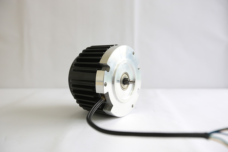 Mac 48V 2000 Rpm to 4000rpm Motor for Mower Motor, Scooter Motorn, Boat Driving