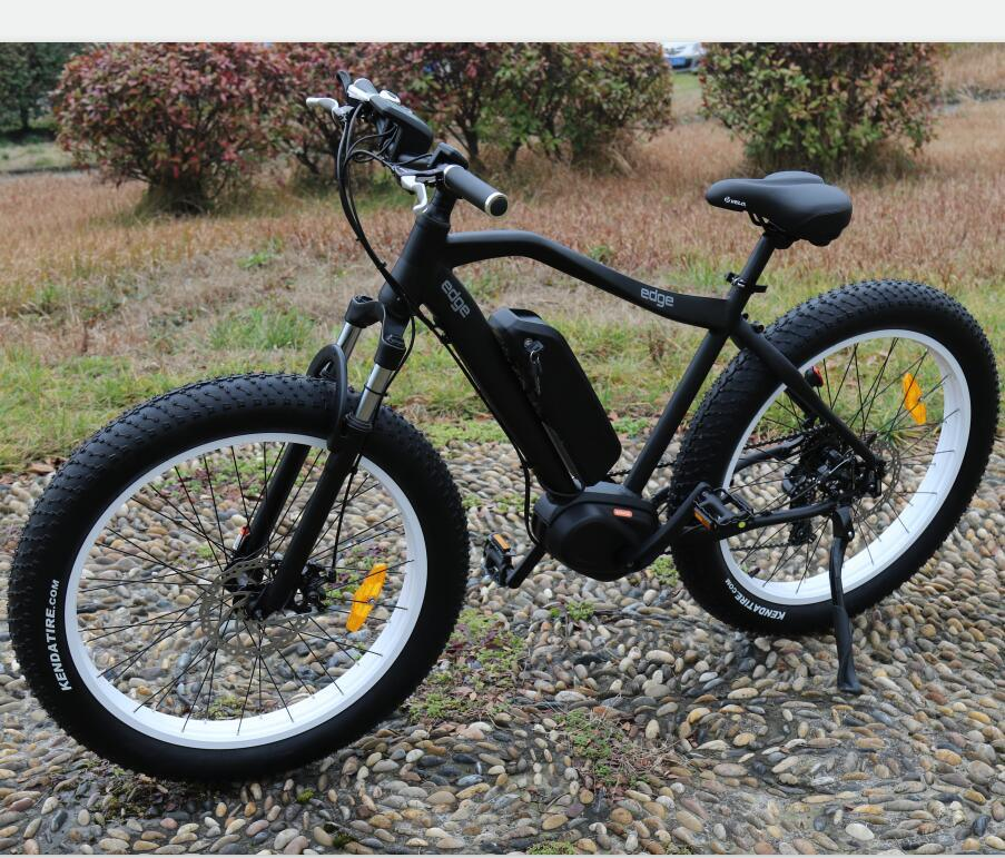 Middle Motor 500W Electric Bicycle