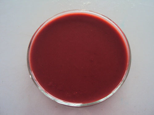 Strawberry Puree Concentrate with High Quality
